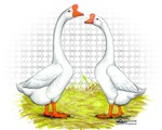 Chinese Goose and Gander