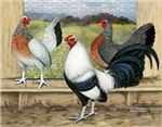 Copy of Duckwing Bantam Chickens