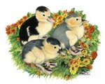 Flower Garden Ducklings