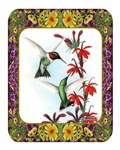 Hummingbirds and Flowers #5