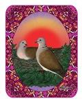 Doves Framed
