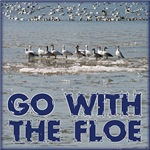 Go with the floe!