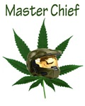Master Chief Helmet w/ Pot Plant