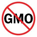 No GMO Shirts