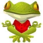 Yoga Frog Shirts