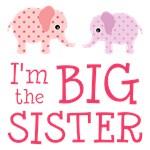 Cute Elephant Big Sister Shirts