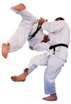 Judo Humor