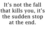 It's Not The Fall That Will Kill You