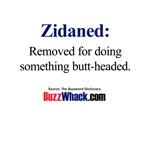 Zidaned