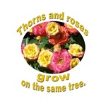 THORNS & ROSES TURKISH PROVERB
