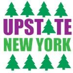 UPSTATE NEW YORK - PINE TREES