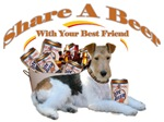 Fox Terrier Share A Beer With Your Best Friend