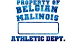 Property of Belgian Malinois