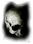 Skulls II