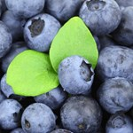 Blueberries & Two Leaves