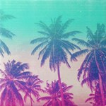 Palm Trees Green Pink Tropical