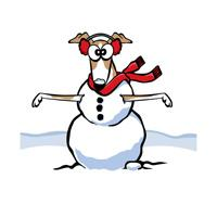 SnowGrey