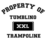 Property of Tumbling Trampoline