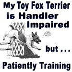 Toy Fox Terrier Agility