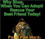 Why Shop Mack