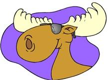 Cool Moose