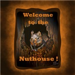 Welcome To The Nuthouse