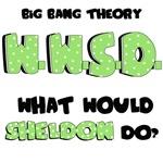 WWSD What Would Sheldon Do Big Bang Theory TV