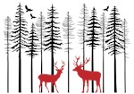 Reindeer in fir tree forest