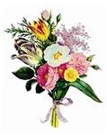 Tulip and Camellia Bouquet