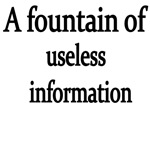 A Fountain Of Useless Information.