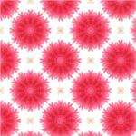 Large Fluffy Pink Flower Pattern
