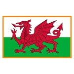 Flag of Wales with border