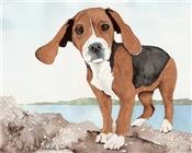Beagle Merchandise