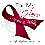 Myeloma For My Hero