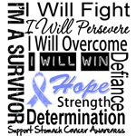 Stomach Cancer Persevere Shirts