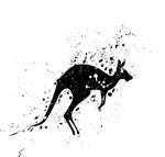 Spotted Kangaroo