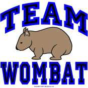 Team Wombat IV