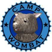Camp Wombat II