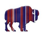 Bison - American Patriotic colors