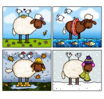 A Sheep of All Seasons row