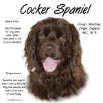Cocker Spaniel (brown)