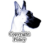 **Our Copyright Policy**
