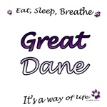 Dane Breathe