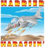 AV-8B Harrier Harassin'