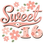 Pink Sweet Sixteen T shirt Birthday Gifts More