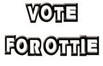 VOTE FOR OTTIES DESIGNS