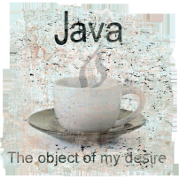 Java-The Object of my desire