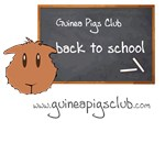 Guinea Pigs Club Back To School