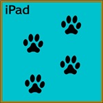 iPad Teal (small)