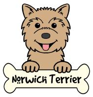 Norwich Terrier Cartoon T-Shirts and Gifts
